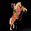 The Freemont Hacienda Horse and Rider neon sign