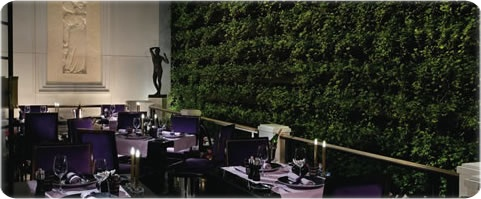 Joel Robuchon Las Vegas restaurant