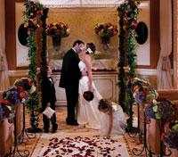 Wynn Las Vegas Wedding